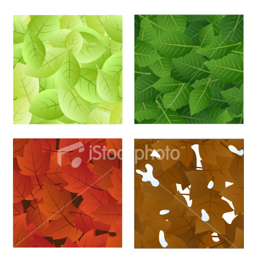 four seasons leaf tiles