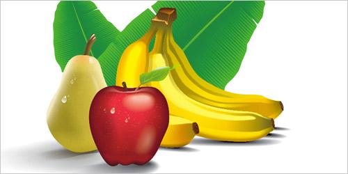 tropical fruits vector