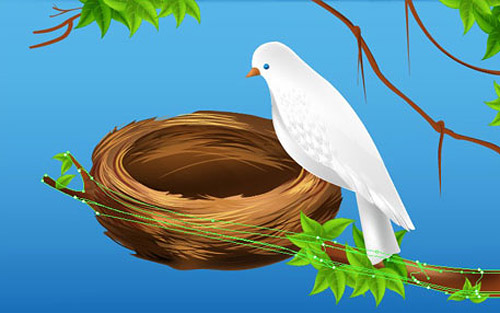 vector bird nest