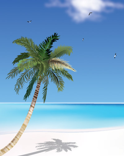 coconut tree and the beach