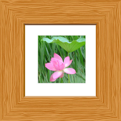 illustrator wooden frame