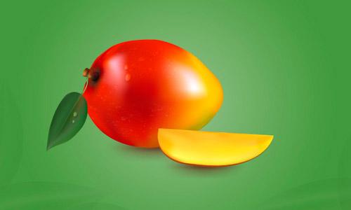 vector mango