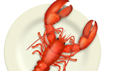 vector lobster