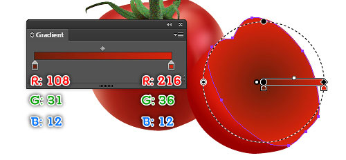 vector tomato