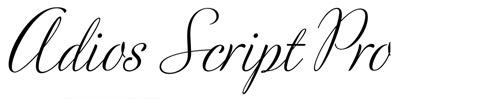 adios script pro