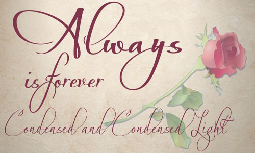 20 Most Beautiful Calligraphy Fonts