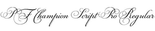 PF-Champion Script Pro Regular