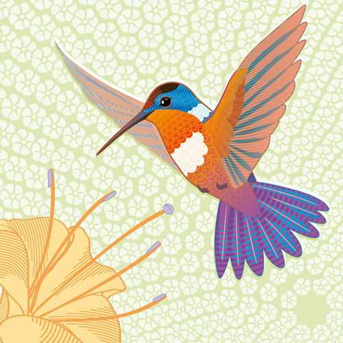 hummingbird-and-flower