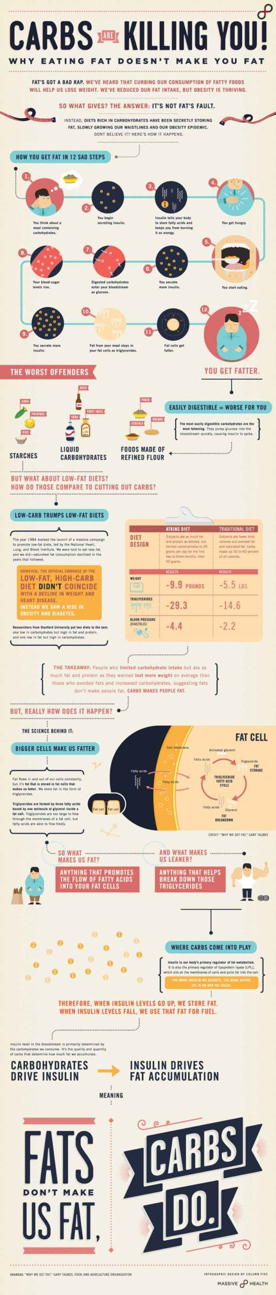 best infographic examples fig 17 carbs are killing you final