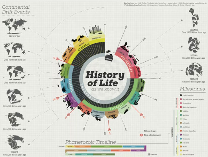 best infographic examples fig 3 history of life