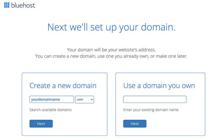 bluehost web hosting domain name