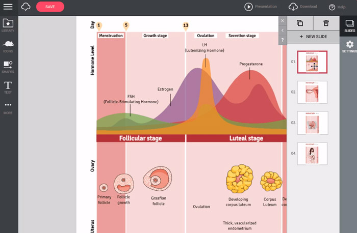 10 best infographic makers online mindthegraph